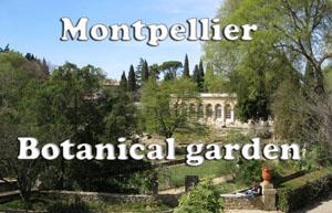 Botanical Garden of Montpellier